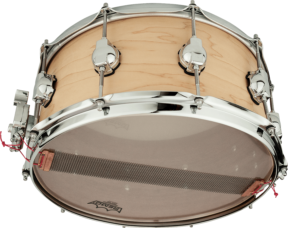 DSDRUM_RCS_MAPLE_MAHOGANY_SN_BOTTOM