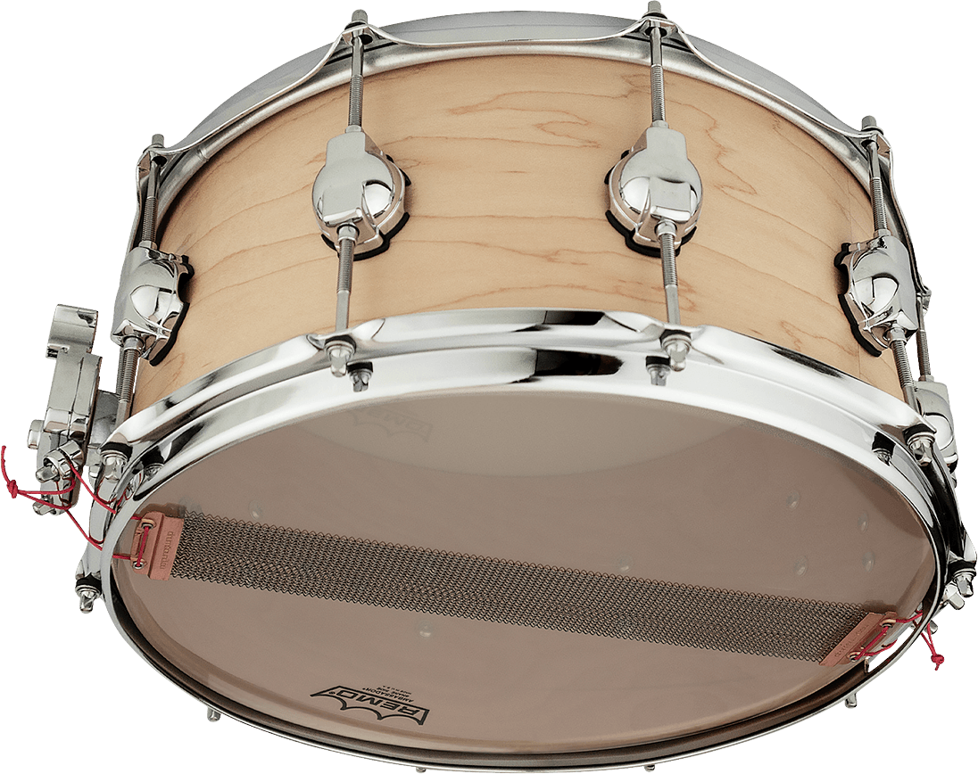 DSDRUM_RCS_MAPLE_SN_BOTTOM